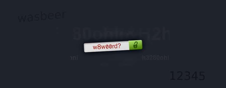 goed en veilig wachtwoord wordpress
