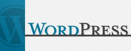WordPress zakelijk gebruiken
